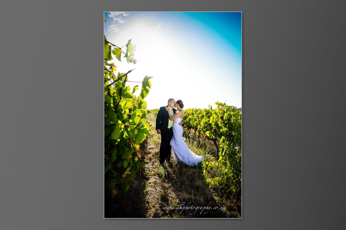 DK Photography DVD+slideshow-267 Cleo & Heinrich's Wedding in D'Aria, Durbanville  Cape Town Wedding photographer