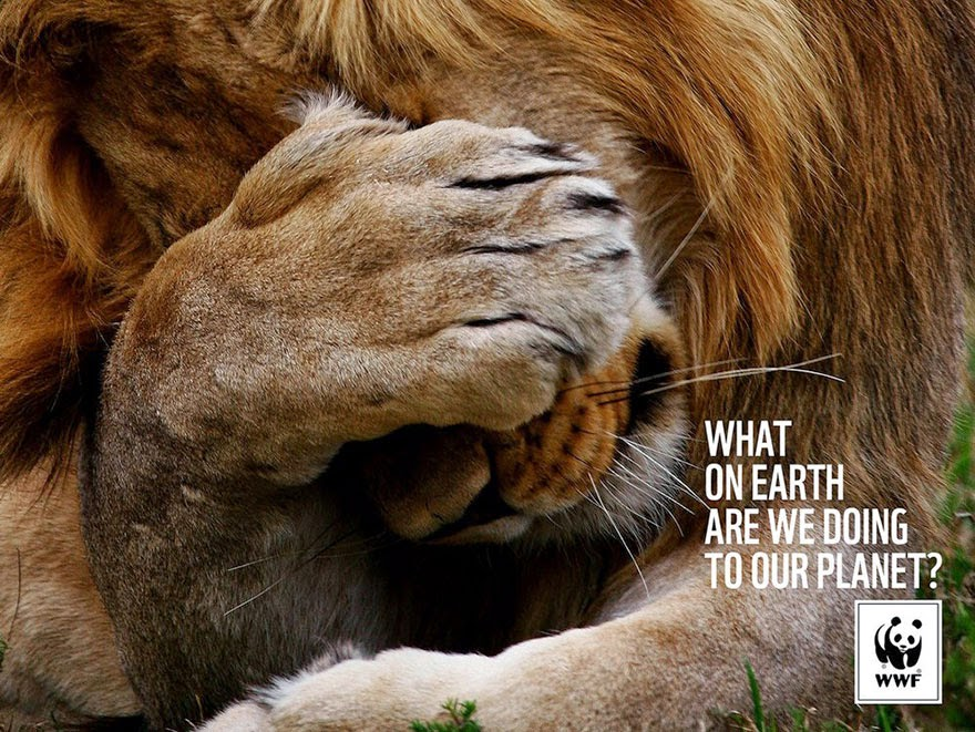 WWF: What On Earth Are We Doing To Our Planet? - 33 Powerful Animal Ad Campaigns That Tell The Uncomfortable Truth