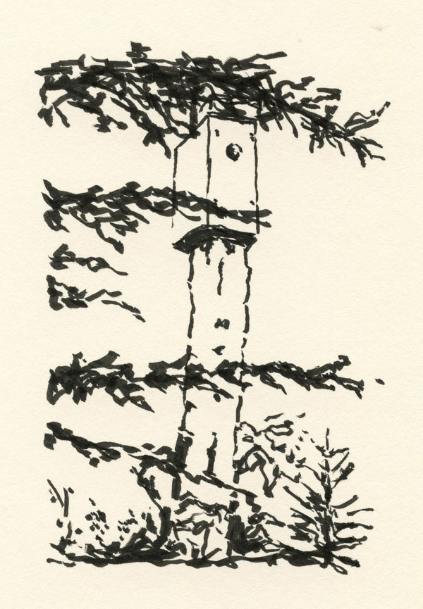 ink drawing of a bluebird house