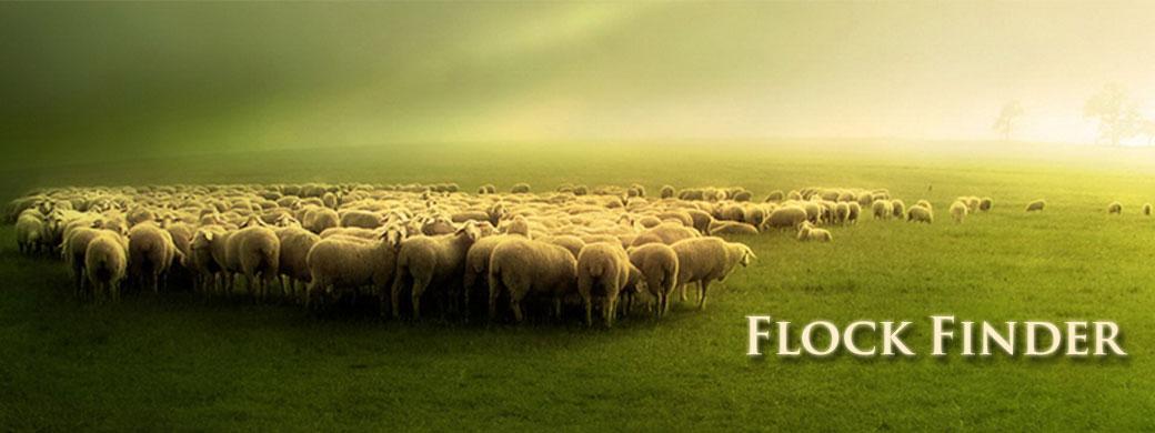 Flock Finder