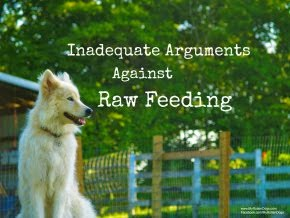 Inadequate Arguments Against Raw Feeding