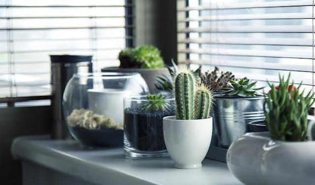 Cómo refrescar tu hogar en verano