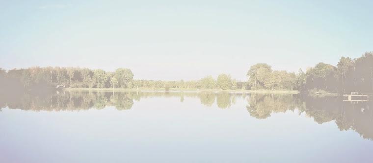 Bloggbild