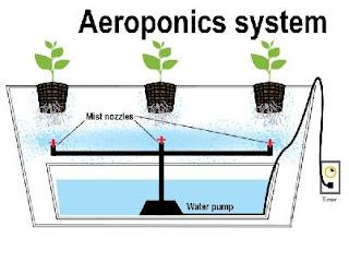 Hydroponic Aeroponic Systems