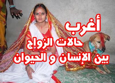 أغرب حالات الزواج بين الإنسان و الحيوان !
