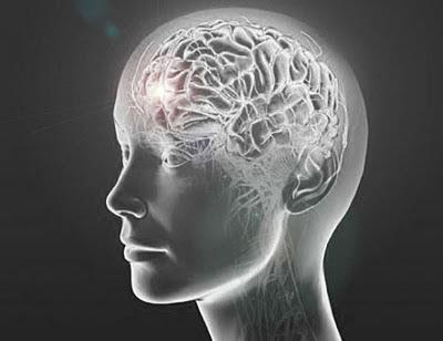 Otak Perempuan Terkontaminasi DNA Sel Laki Laki Gimana Bisa