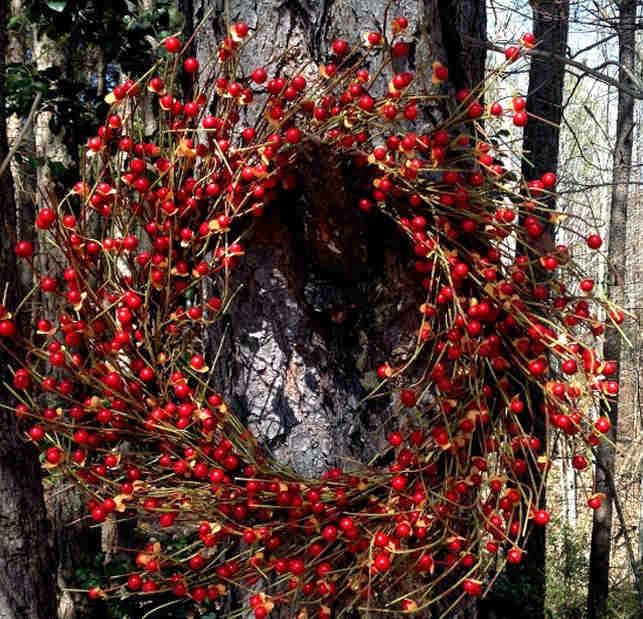 Coronas de Navidad, Decoración Puertas y Ventanas