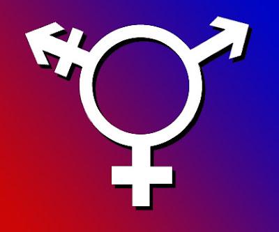 gay lesbo trans