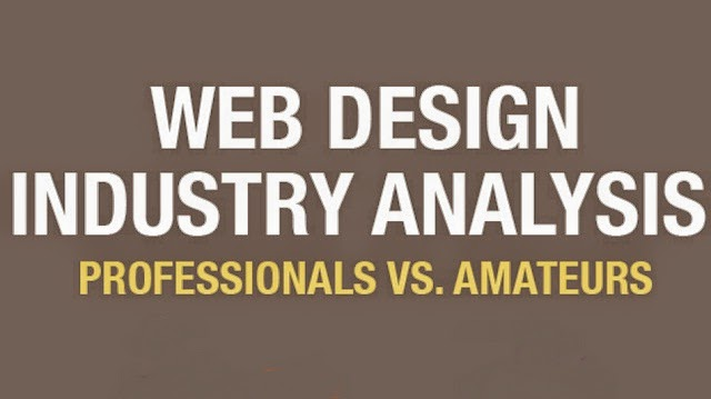 Professional Vs Amateur Web Designers [ Infographics ]