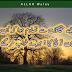 Easi Haqiqatoon sy Tasadum Hova Ka - Urdu Poetry Design Grafics, Urdu Shayari