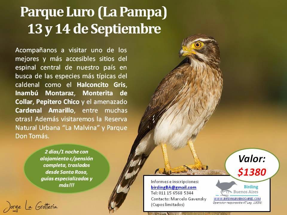 Parque Luro - 13 y 14 de septiembre con Birding Buenos Aires