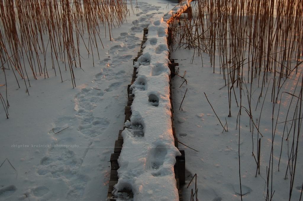 Chodzą jeziorami ludzie - spacer z Komedą w tle
