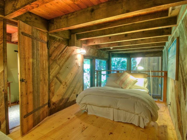 Photo of king size bed inside of tree house in the forest