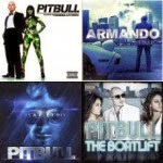 Capa do álbum Pitbull – Collections Hits Albums (2013)
