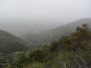 View southwest from Van Tassel Ridge