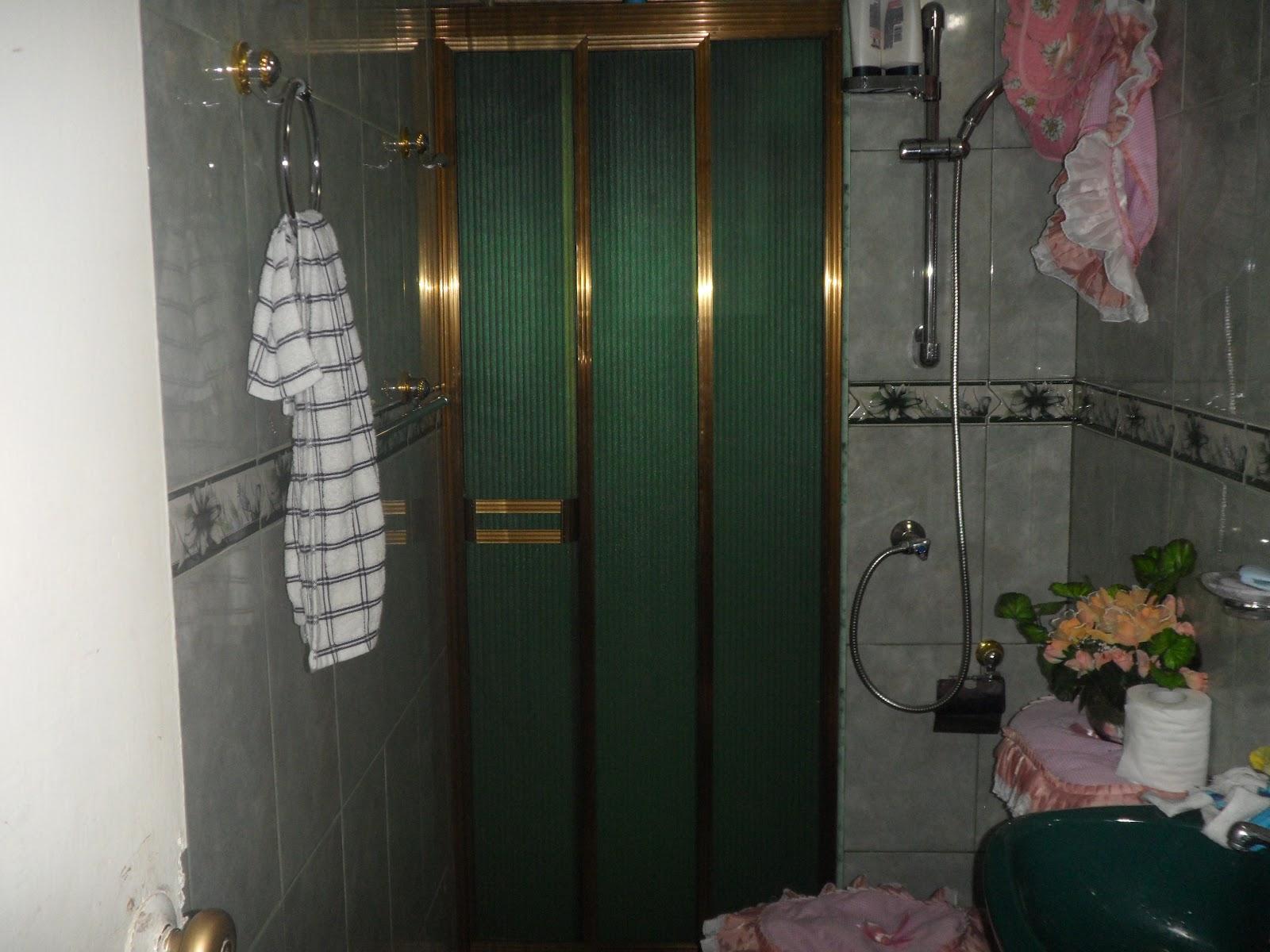 Puertas De Baño Acrilicas:Puertas de Ducha