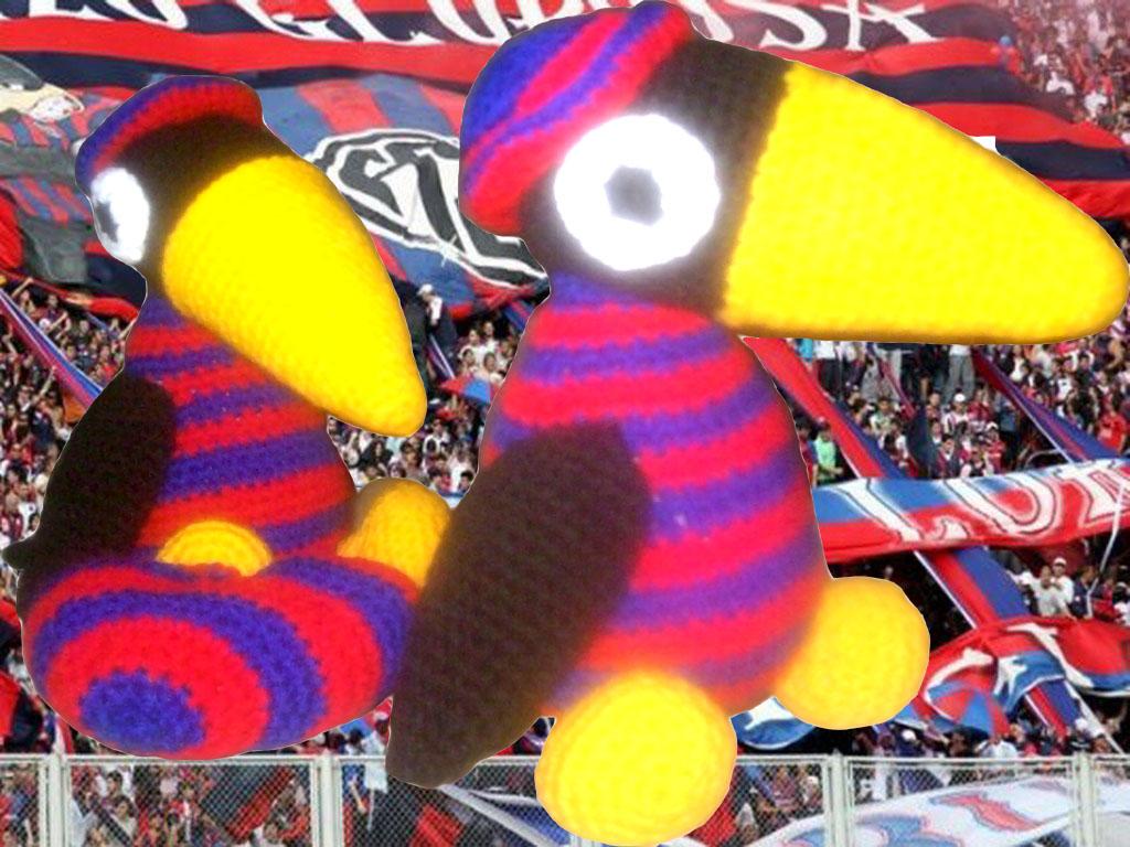 Cuervo tejido en crochet, exclusivo para los hinchas de San Lorenzo