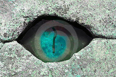 Small Pool Looks like an Eye