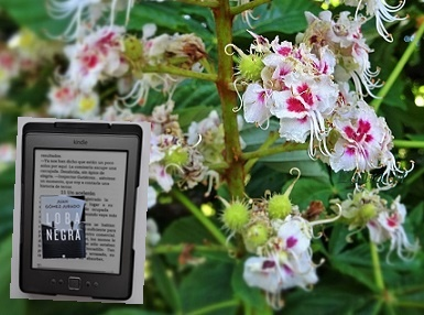 Entre flores 🌺📖📚  libros