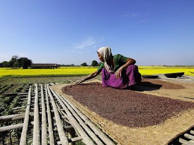Las metas globales del 2030 ponen el hambre y la agricultura al centro de la política mundial