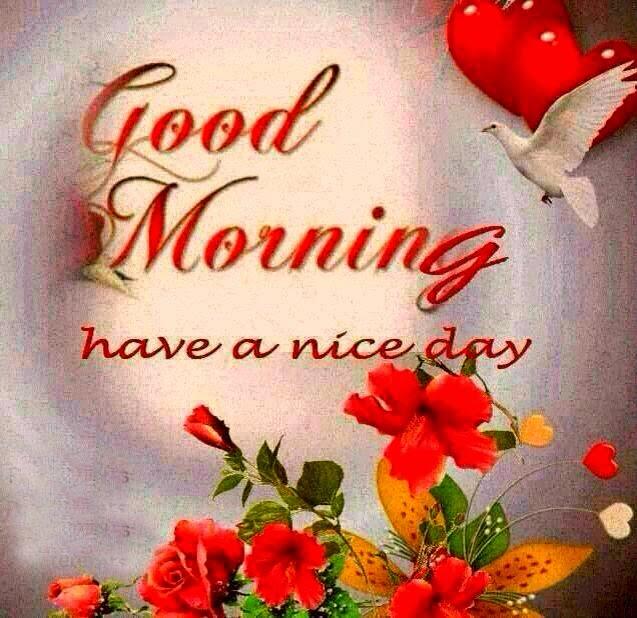 Good Morning Ji : Muhammad talib good morning wallpaper mt new