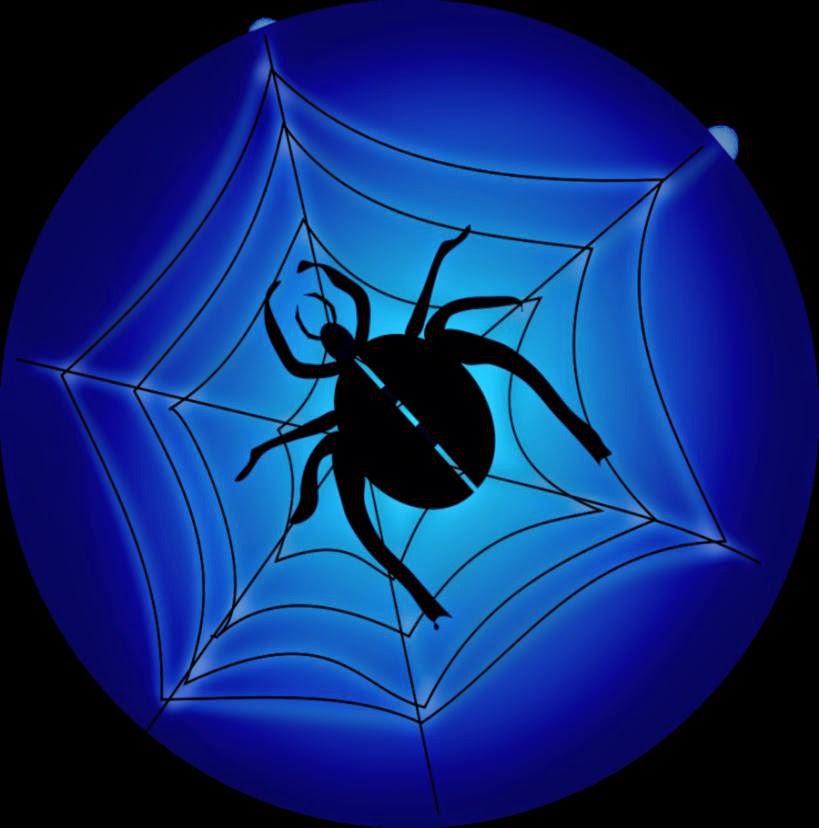 Spider Web Outline
