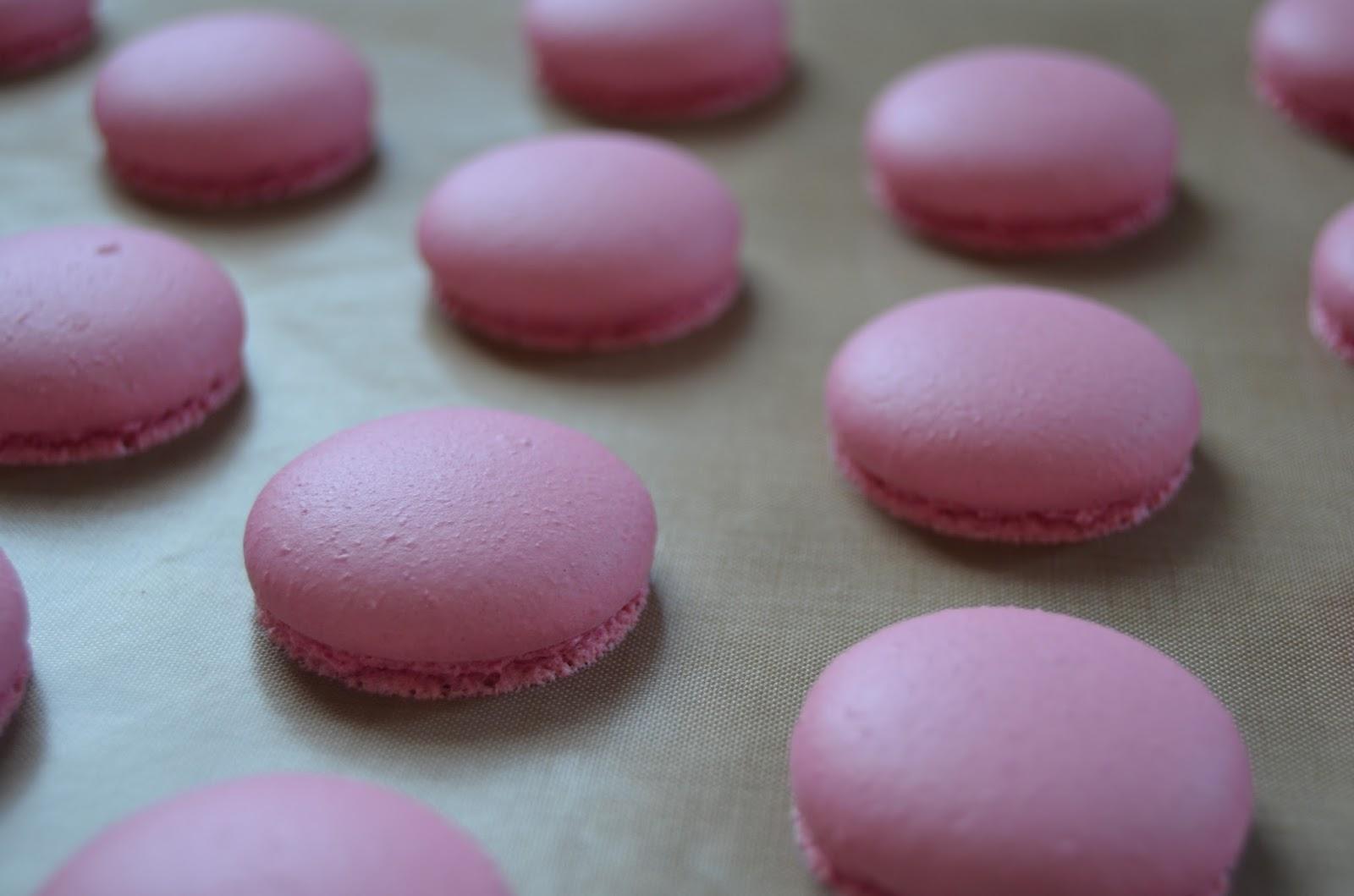 Macarons recién salidos del horno