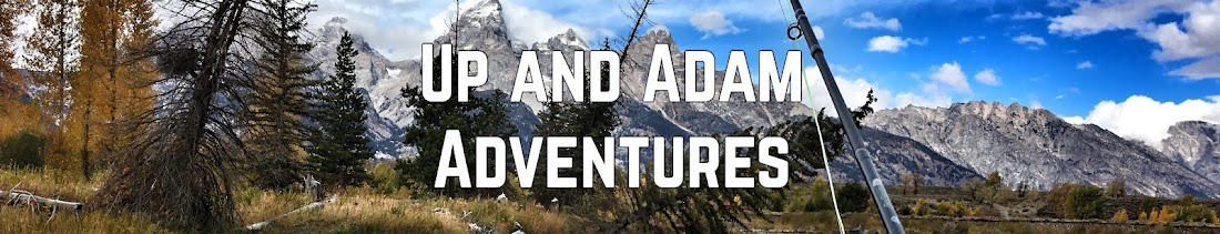 Up and Adam Adventures
