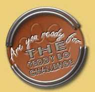 Teddy Bo Challenges