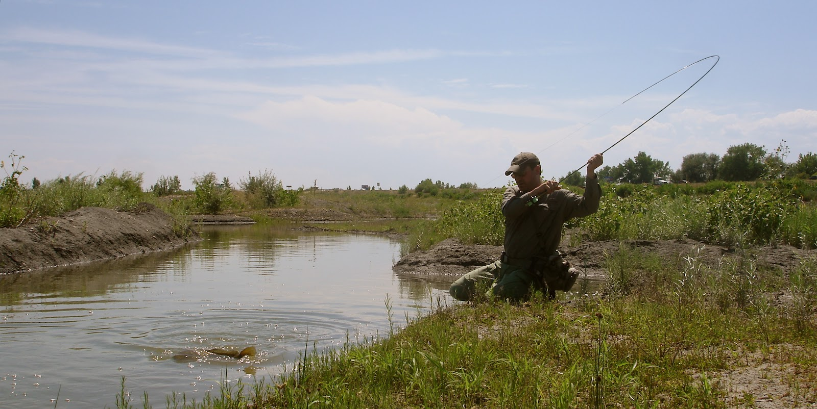 Mysteries internal august 2012 for Carp fly fishing