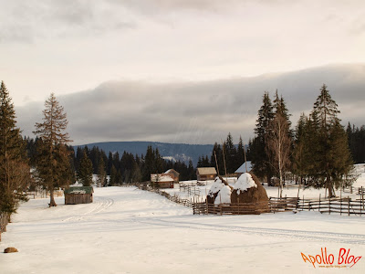 Bilbor Iarna