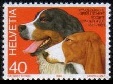 1983年スイス連邦 バーニーズ・マウンテンドッグとシュヴィツァー・ラウフントの切手