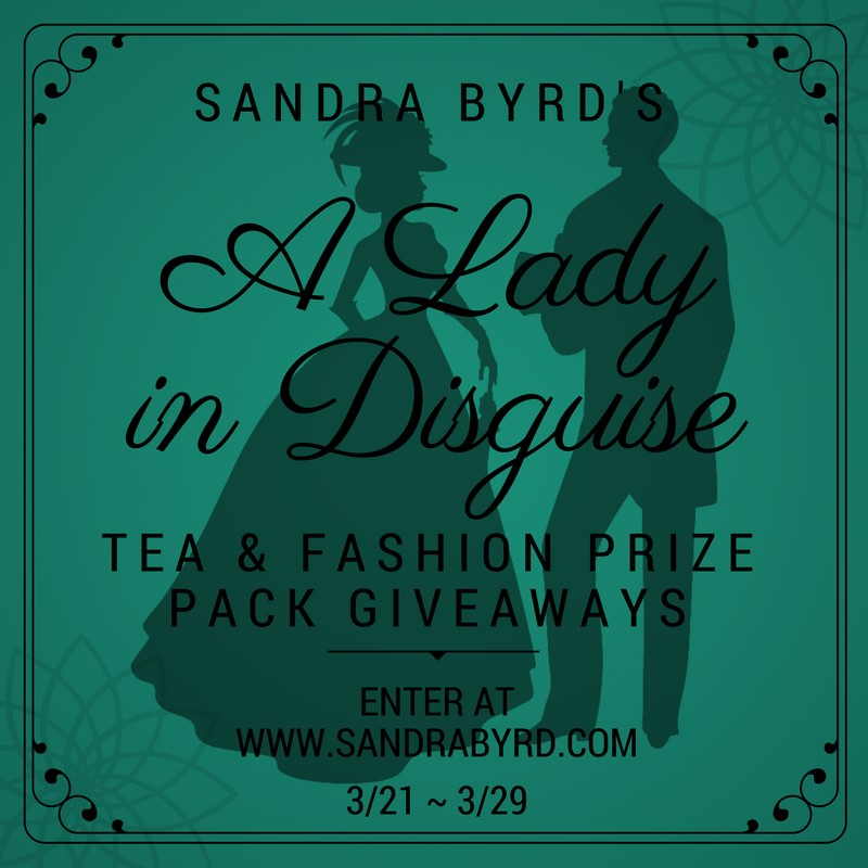 A Lady in Disquise Giveaway!