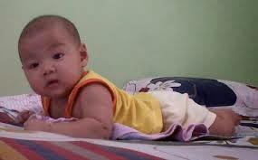 gambar bayi belajar tengkurap
