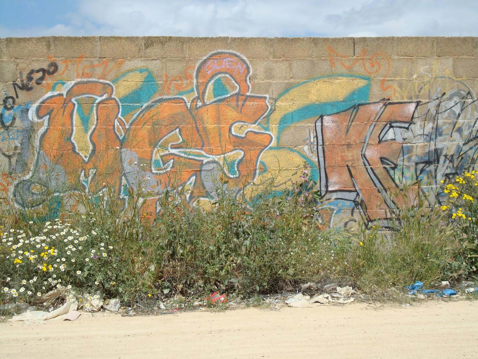 El blog de joaqu n medina graffitis arte callejero para for Piscina cubierta requena