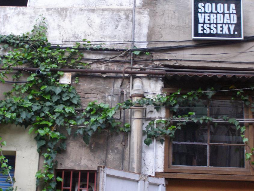 Casa taller birdie mi lista de cosas que hacer en barcelona for Mi casa cosas de casa