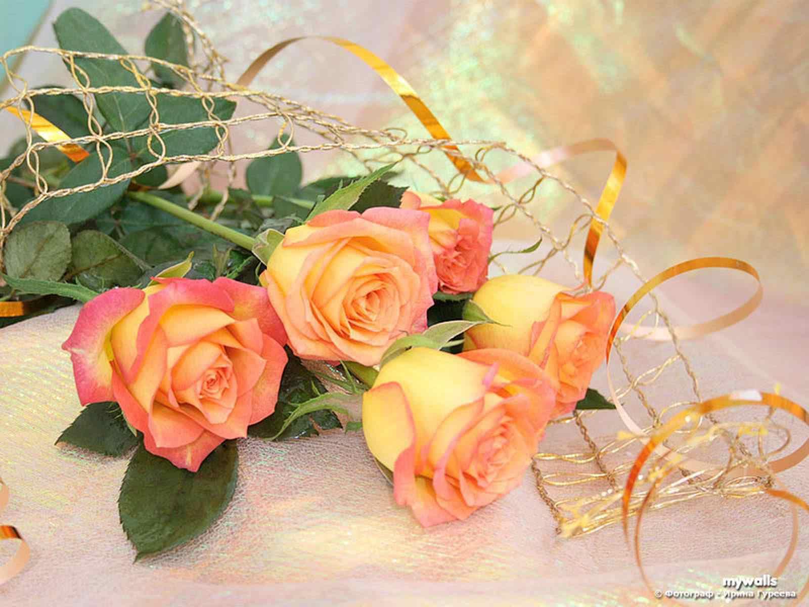 http://3.bp.blogspot.com/-0dUtk8d7tm4/UEWUwVEPycI/AAAAAAAABpQ/SH5AQB7S3y8/s1600/2dcgagw.jpg