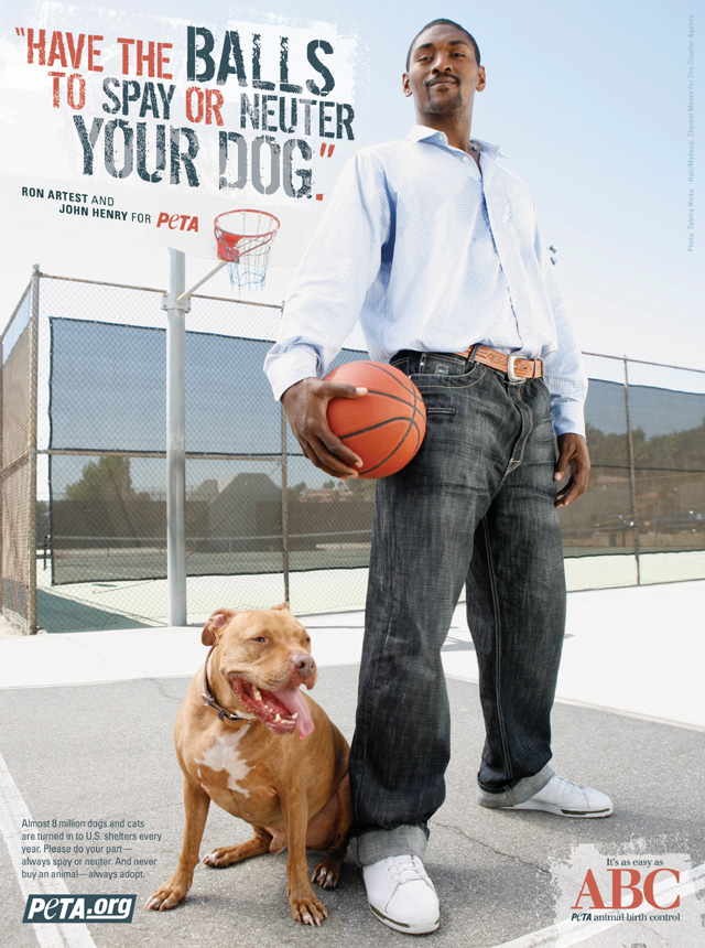 Will Neutering A Dog Stop Food Aggression
