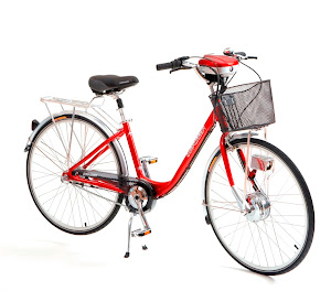 Sunrunner Lithium Electric Bikes