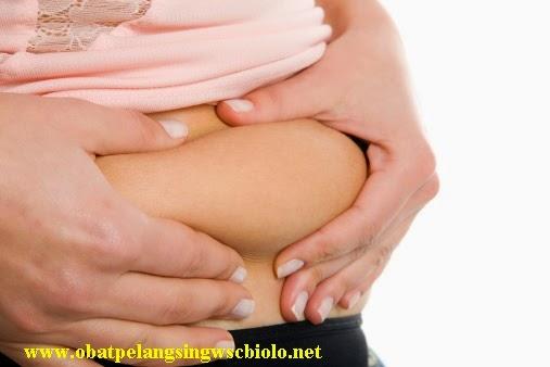 Obat pelangsing ampuh wsc biolo