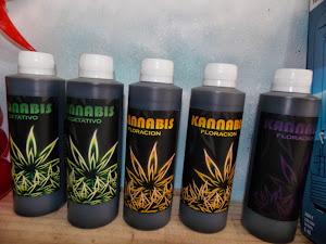 """""""kannabis"""" el mejor bioestimulante y revitalizante del mercado."""