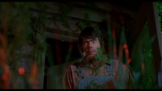 Stephen King as Jordy Verrill in CREEPSHOW (1982)
