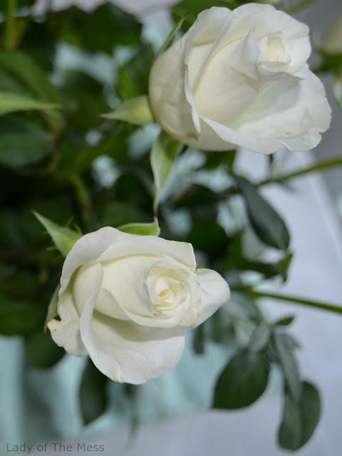 ruusu, rose, äitienpäivä