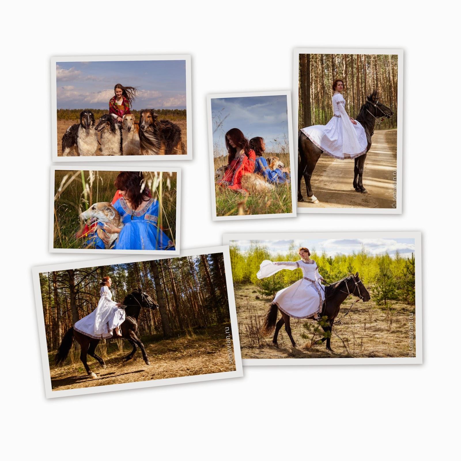 Конные прогулки и фотосессии с лошадьми и борзыми