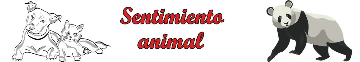 Sentimiento Animal