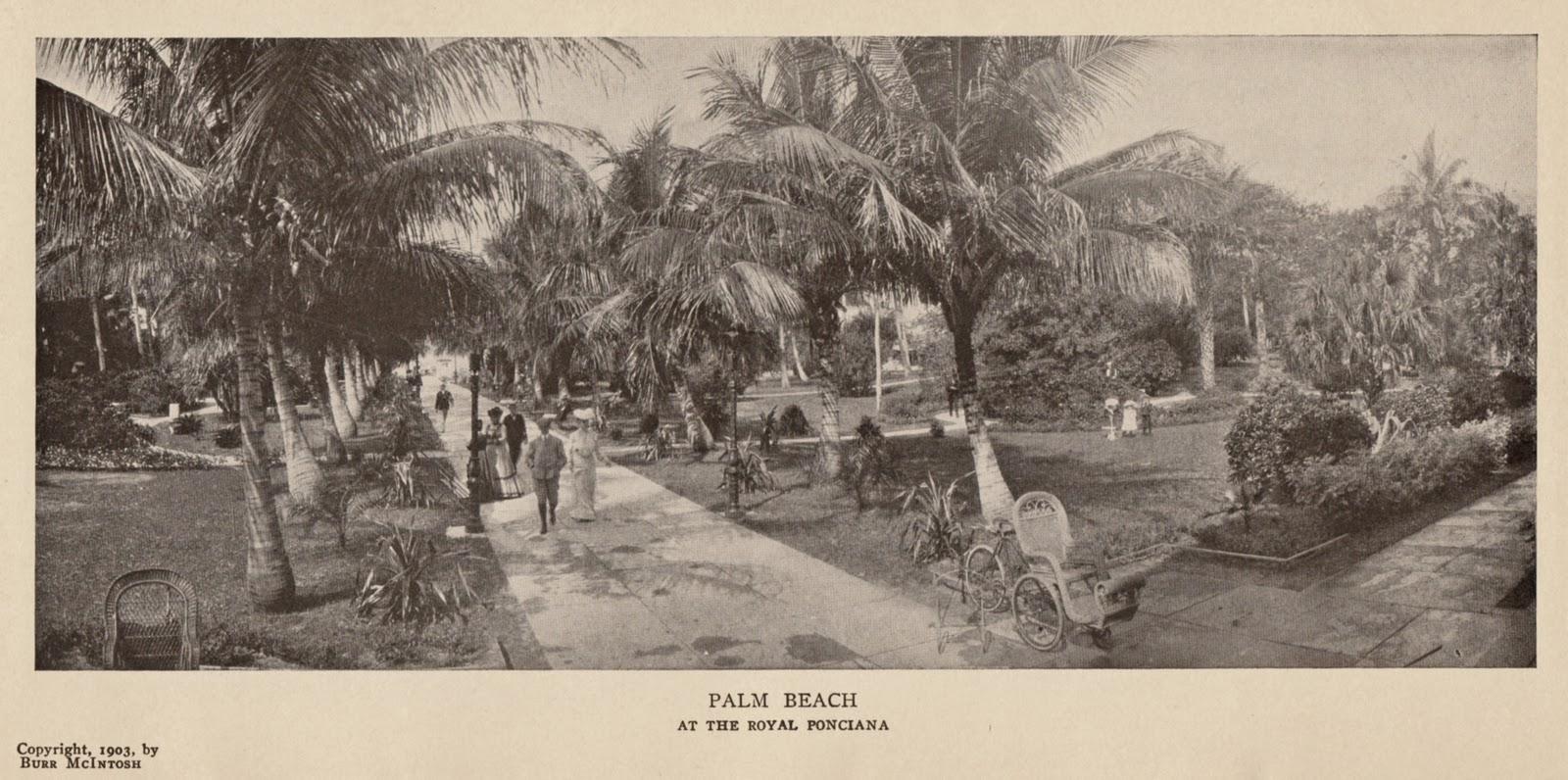Henry Mcintosh Palm Beach