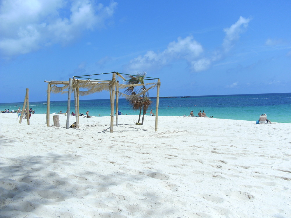 Cabbage beach access