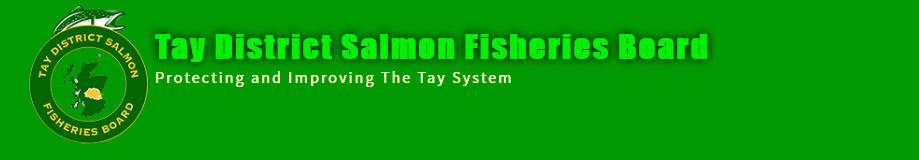 Tay Salmon Fishing Scotland