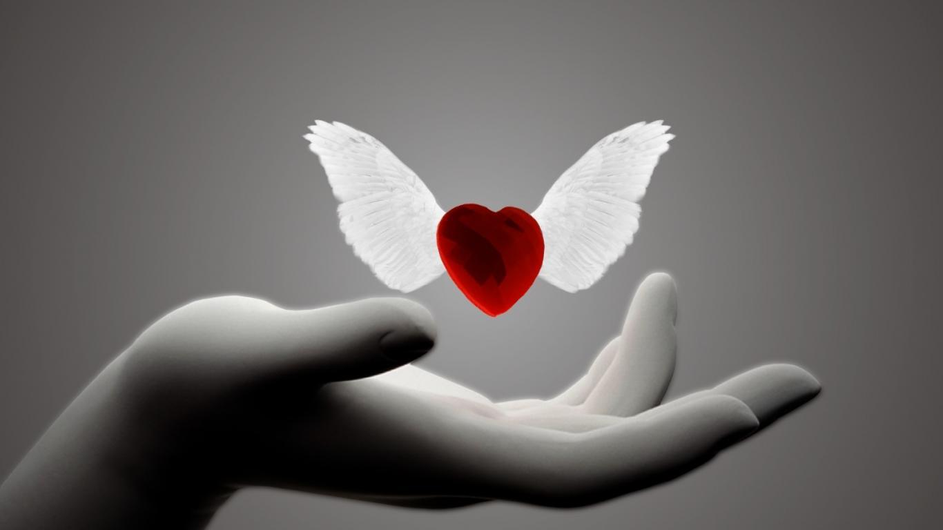 Pregovori in modrosti o ljubezni