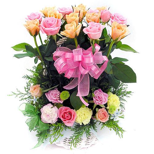 Happy Birthday Admin (Trần Trung Đức) Hoa-sinh-nhat-hsn016-1